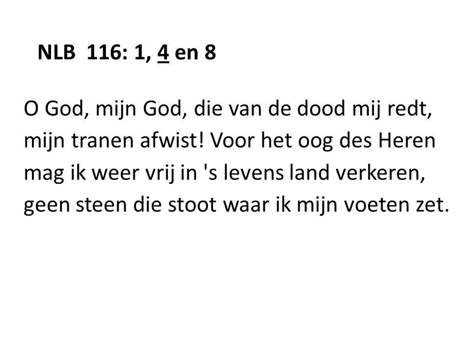 NLB 116: 1, 4 en 8 O God, mijn God, die van de dood mij redt, mijn tranen afwist! Voor het oog des Heren mag ik weer vrij in 's levens land verkeren,