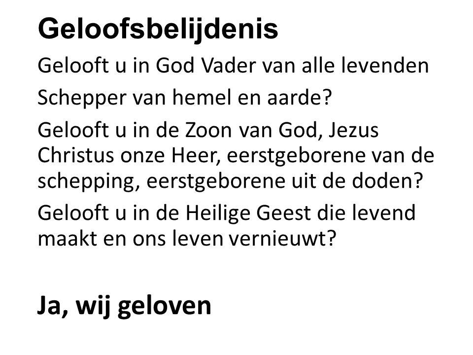 Geloofsbelijdenis Gelooft u in God Vader van alle levenden Schepper van hemel en aarde? Gelooft u in de Zoon van God, Jezus Christus onze Heer, eerstg
