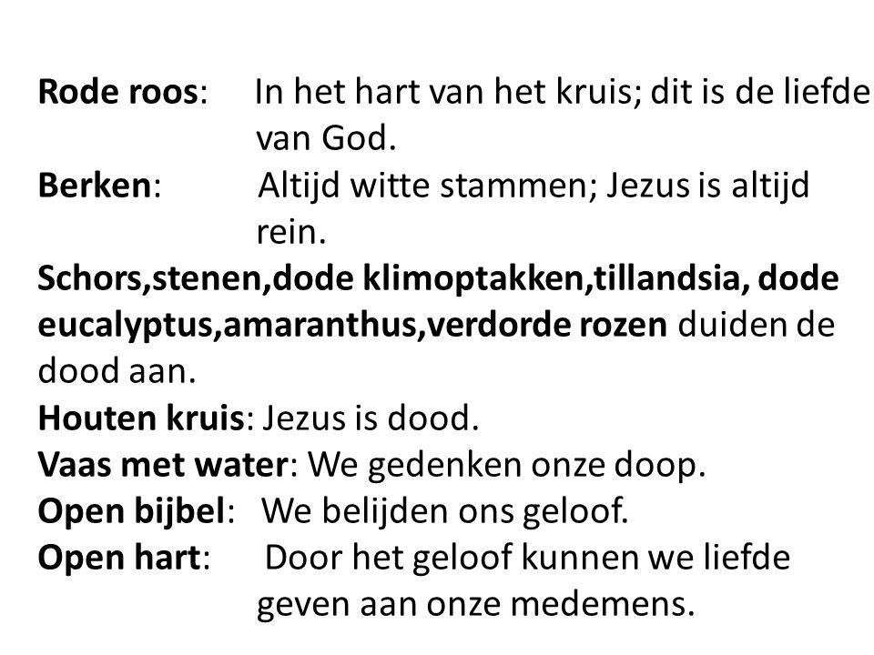 Rode roos: In het hart van het kruis; dit is de liefde van God. Berken: Altijd witte stammen; Jezus is altijd rein. Schors,stenen,dode klimoptakken,ti