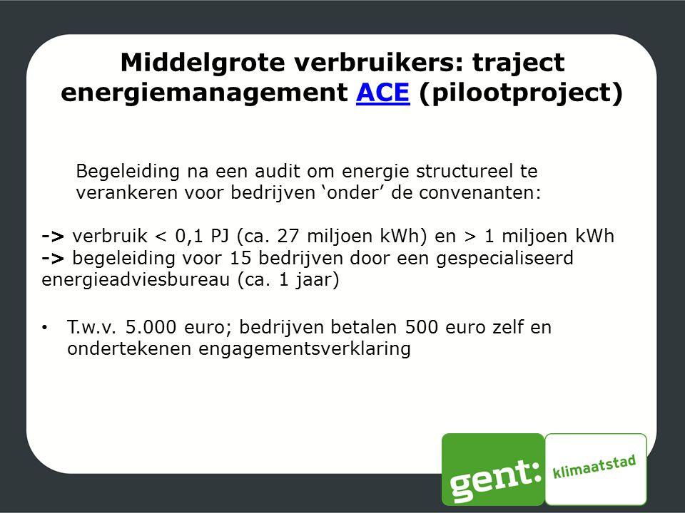 Middelgrote verbruikers: traject energiemanagement ACE (pilootproject)ACE Begeleiding na een audit om energie structureel te verankeren voor bedrijven