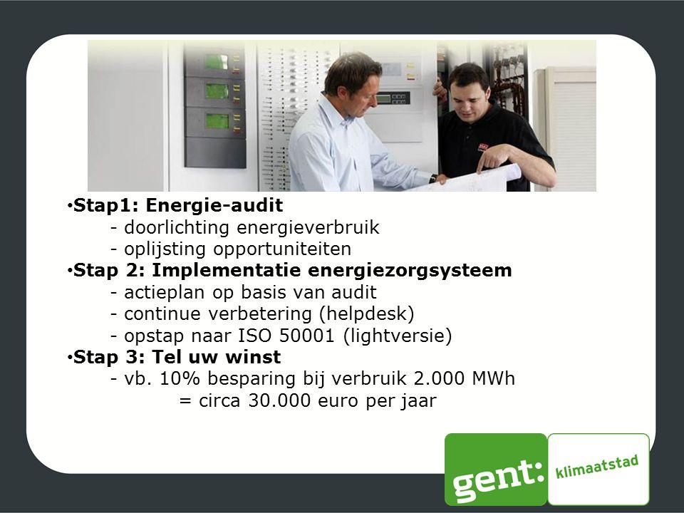 Stap1: Energie-audit - doorlichting energieverbruik - oplijsting opportuniteiten Stap 2: Implementatie energiezorgsysteem - actieplan op basis van aud