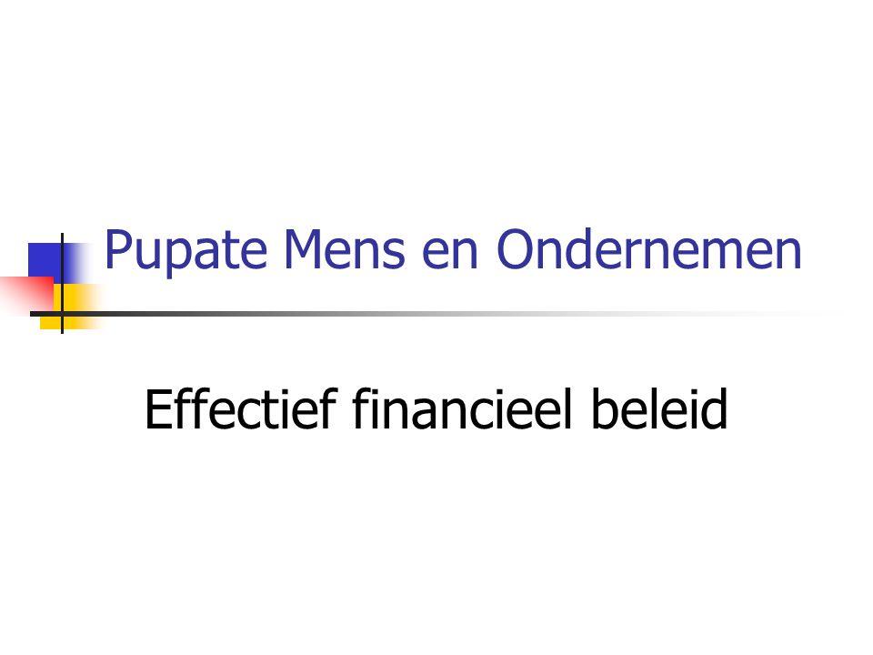 Pupate Mens en Ondernemen Effectief financieel beleid