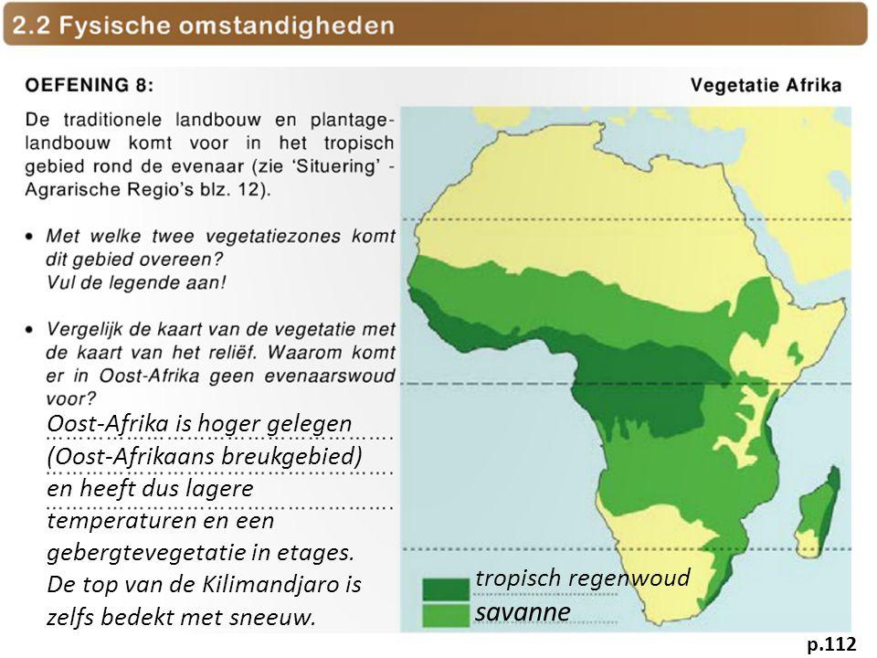tropisch regenwoud savanne Oost-Afrika is hoger gelegen (Oost-Afrikaans breukgebied) en heeft dus lagere temperaturen en een gebergtevegetatie in etag