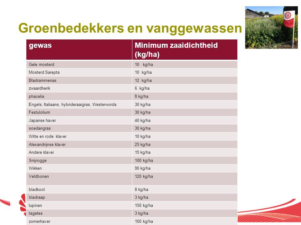 Groenbedekkers en vanggewassen gewasMinimum zaaidichtheid (kg/ha) Gele mosterd10 kg/ha Mosterd Sarepta10 kg/ha Bladrammenas12 kg/ha zwaardherik6 kg/ha