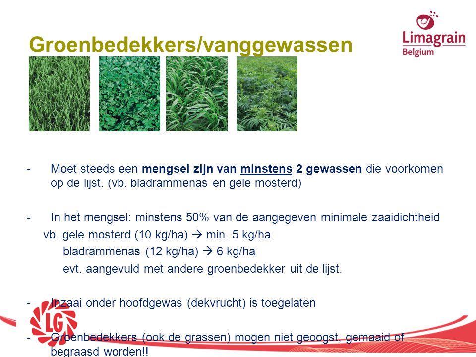 Groenbedekkers/vanggewassen -Moet steeds een mengsel zijn van minstens 2 gewassen die voorkomen op de lijst. (vb. bladrammenas en gele mosterd) -In he