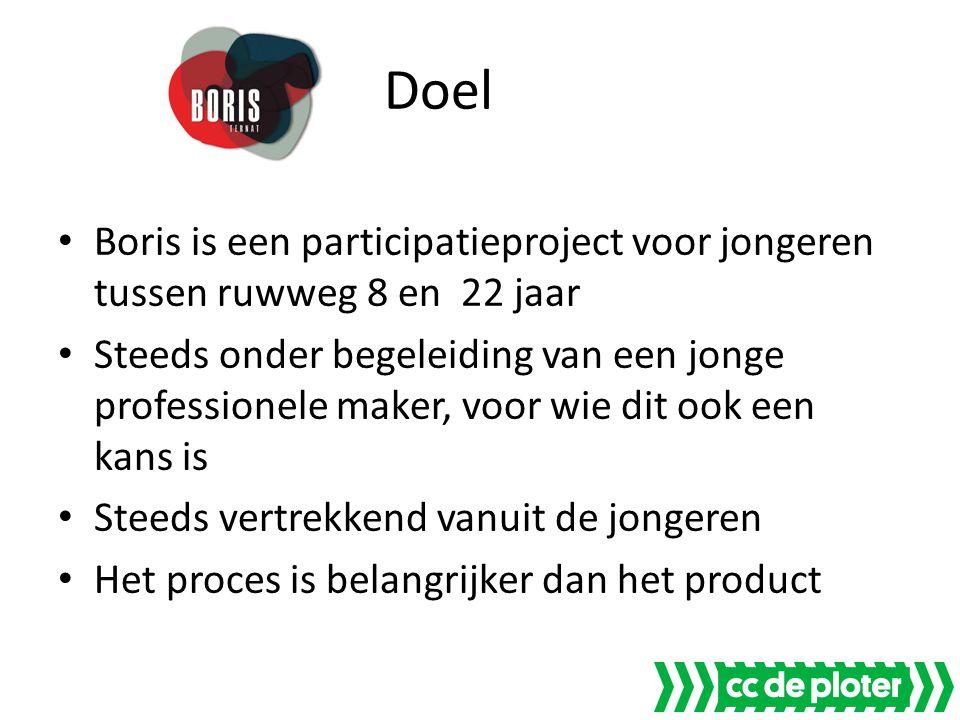 Doel Boris is een participatieproject voor jongeren tussen ruwweg 8 en 22 jaar Steeds onder begeleiding van een jonge professionele maker, voor wie dit ook een kans is Steeds vertrekkend vanuit de jongeren Het proces is belangrijker dan het product
