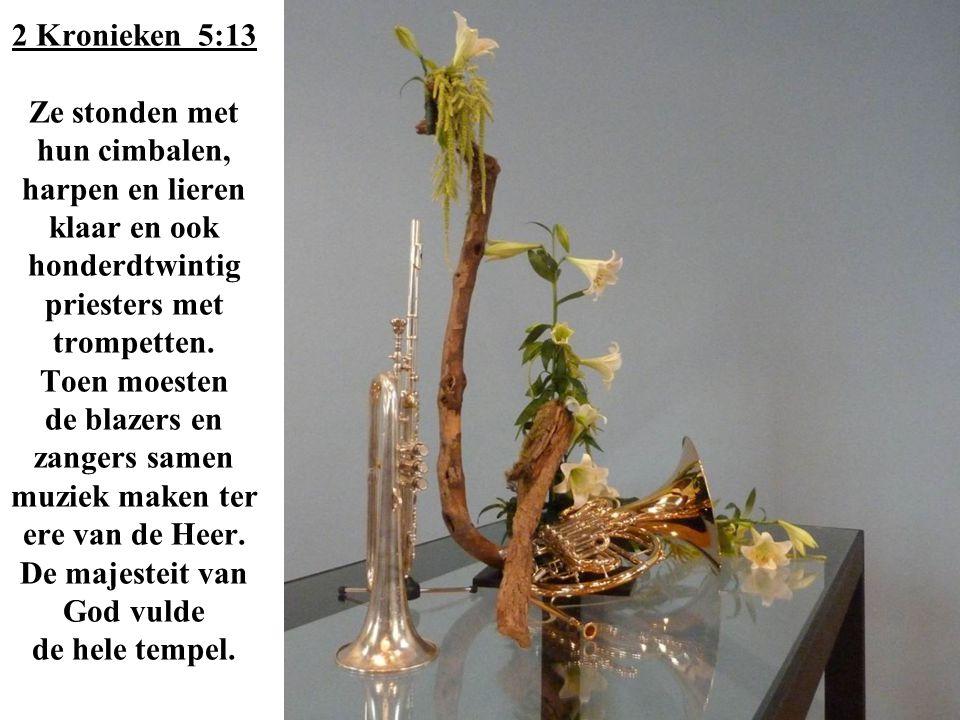 2 Kronieken 5:13 Ze stonden met hun cimbalen, harpen en lieren klaar en ook honderdtwintig priesters met trompetten.