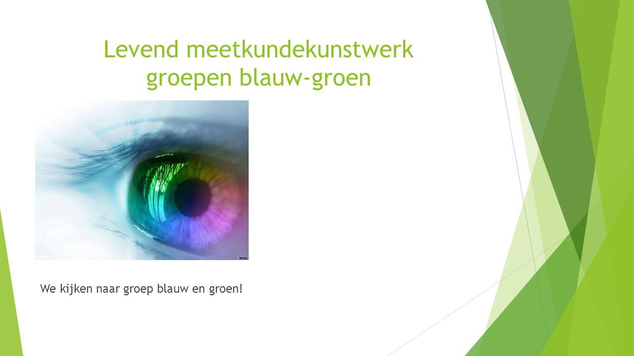 Levend meetkundekunstwerk groepen blauw-groen We kijken naar groep blauw en groen!