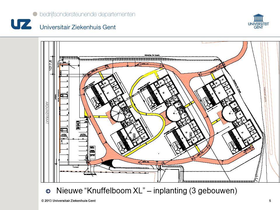 """5© 2013 Universitair Ziekenhuis Gent Nieuwe """"Knuffelboom XL"""" – inplanting (3 gebouwen)"""