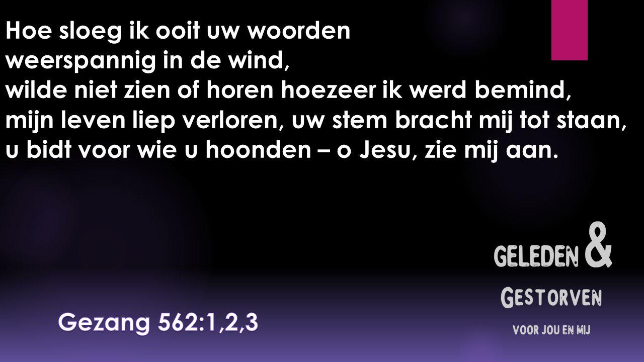 Hoe sloeg ik ooit uw woorden weerspannig in de wind, wilde niet zien of horen hoezeer ik werd bemind, mijn leven liep verloren, uw stem bracht mij tot staan, u bidt voor wie u hoonden – o Jesu, zie mij aan.