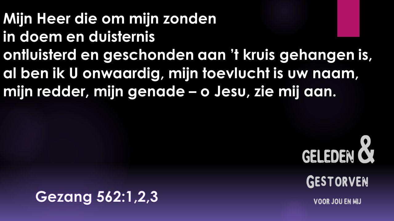 Mijn Heer die om mijn zonden in doem en duisternis ontluisterd en geschonden aan 't kruis gehangen is, al ben ik U onwaardig, mijn toevlucht is uw naam, mijn redder, mijn genade – o Jesu, zie mij aan.