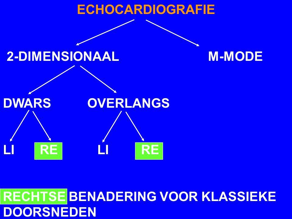 ECHOCARDIOGRAFIE 2-DIMENSIONAAL M-MODE DWARS OVERLANGS LI RE RECHTSE BENADERING VOOR KLASSIEKE DOORSNEDEN