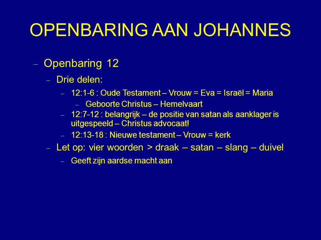 OPENBARING AAN JOHANNES  Openbaring 12  Drie delen:  12:1-6 : Oude Testament – Vrouw = Eva = Israël = Maria  Geboorte Christus – Hemelvaart  12:7-12 : belangrijk – de positie van satan als aanklager is uitgespeeld – Christus advocaat.
