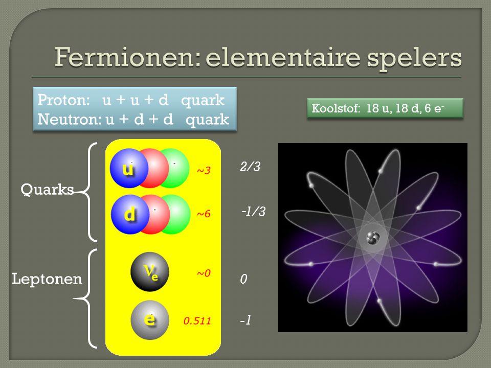 Quarks Leptonen 2/3 - 1/3 0 Proton: u + u + d quark Neutron: u + d + d quark Proton: u + u + d quark Neutron: u + d + d quark Koolstof: 18 u, 18 d, 6