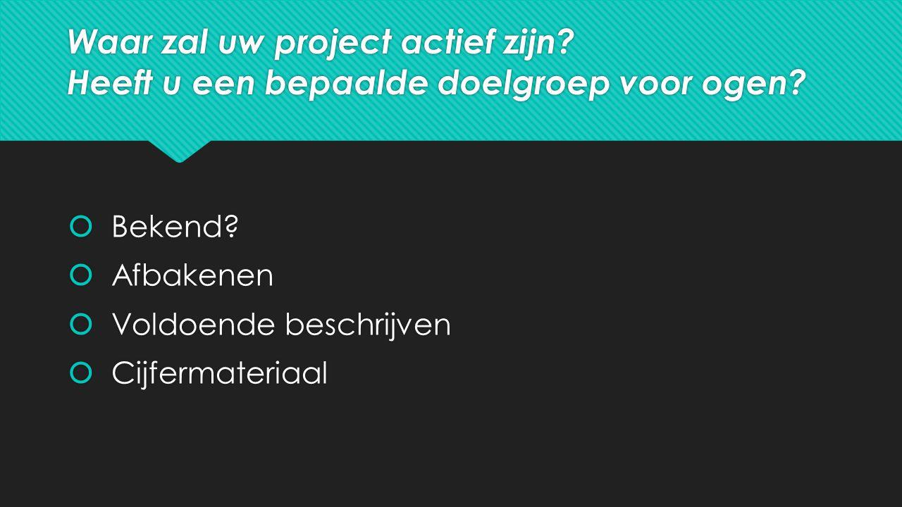 Waar zal uw project actief zijn. Heeft u een bepaalde doelgroep voor ogen.
