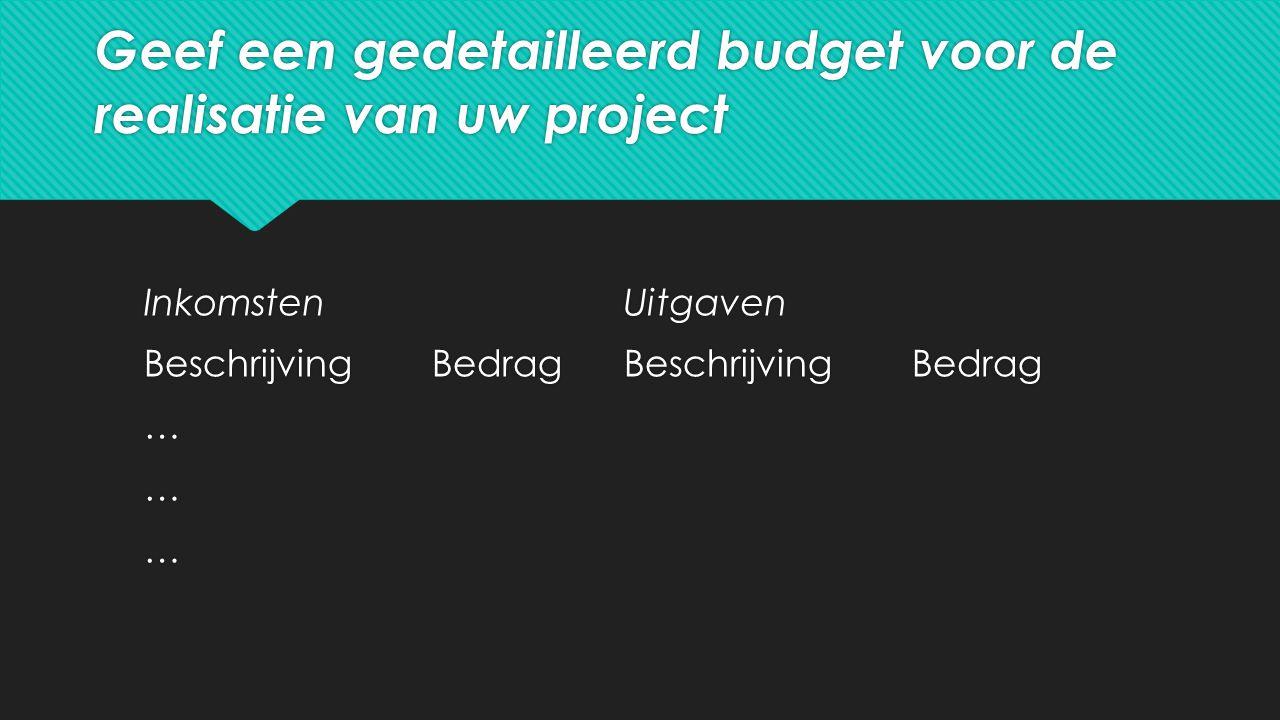 Geef een gedetailleerd budget voor de realisatie van uw project InkomstenUitgaven BeschrijvingBedragBeschrijvingBedrag … InkomstenUitgaven BeschrijvingBedragBeschrijvingBedrag …