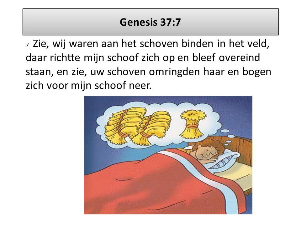 Genesis 37:7 7 Zie, wij waren aan het schoven binden in het veld, daar richtte mijn schoof zich op en bleef overeind staan, en zie, uw schoven omringd