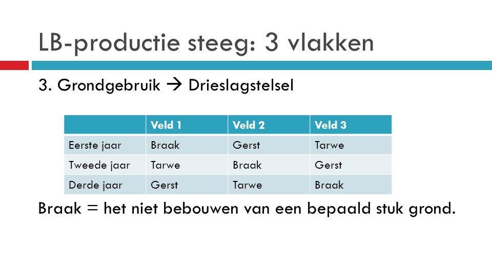 LB-productie steeg: 3 vlakken 3. Grondgebruik  Drieslagstelsel Braak = het niet bebouwen van een bepaald stuk grond. Veld 1Veld 2Veld 3 Eerste jaarBr