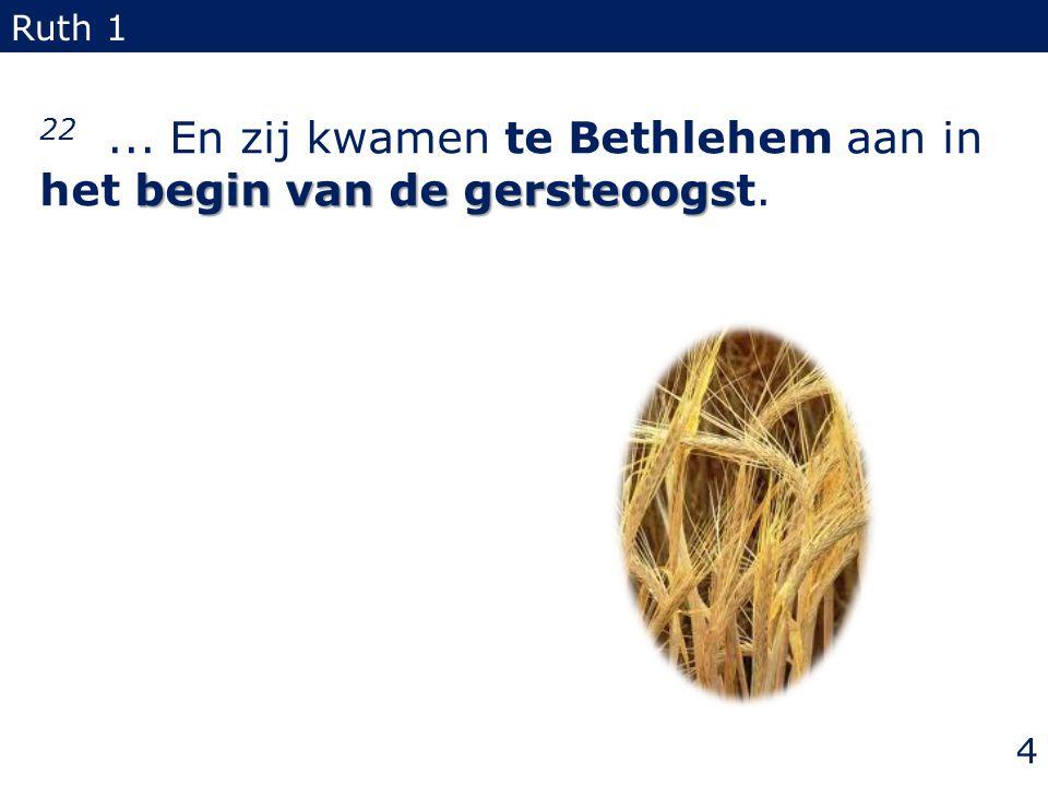 begin van de gersteoogs 22... En zij kwamen te Bethlehem aan in het begin van de gersteoogst. Ruth 1 4