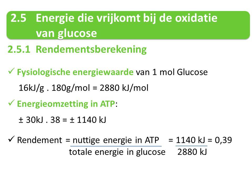 2.5.1 Rendementsberekening Fysiologische energiewaarde van 1 mol Glucose 16kJ/g. 180g/mol = 2880 kJ/mol Energieomzetting in ATP: ± 30kJ. 38 = ± 1140 k