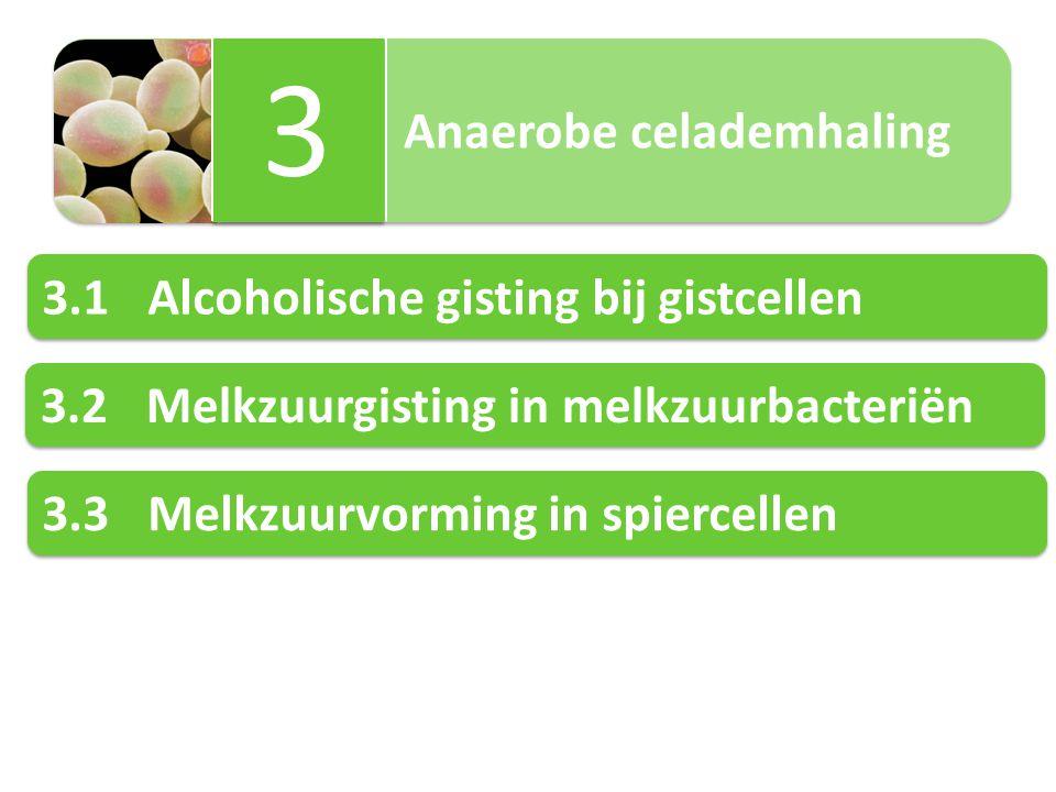 Anaerobe celademhaling 3 3 3.1Alcoholische gisting bij gistcellen 3.2Melkzuurgisting in melkzuurbacteriën 3.3Melkzuurvorming in spiercellen