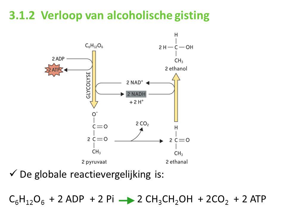 3.1.2 Verloop van alcoholische gisting De globale reactievergelijking is: C 6 H 12 O 6 + 2 ADP + 2 Pi 2 CH 3 CH 2 OH + 2CO 2 + 2 ATP