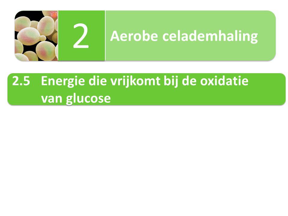 2.5.1 Rendementsberekening Fysiologische energiewaarde van 1 mol Glucose 16kJ/g.