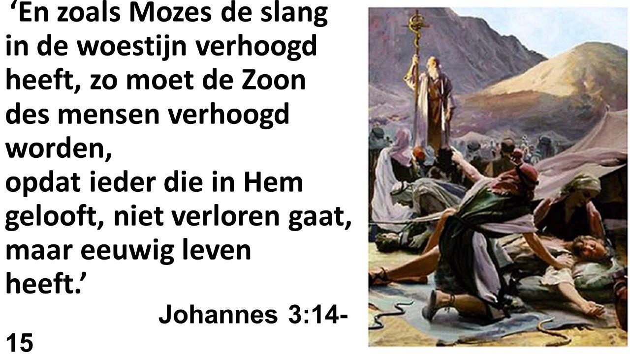 'En zoals Mozes de slang in de woestijn verhoogd heeft, zo moet de Zoon des mensen verhoogd worden, opdat ieder die in Hem gelooft, niet verloren gaat