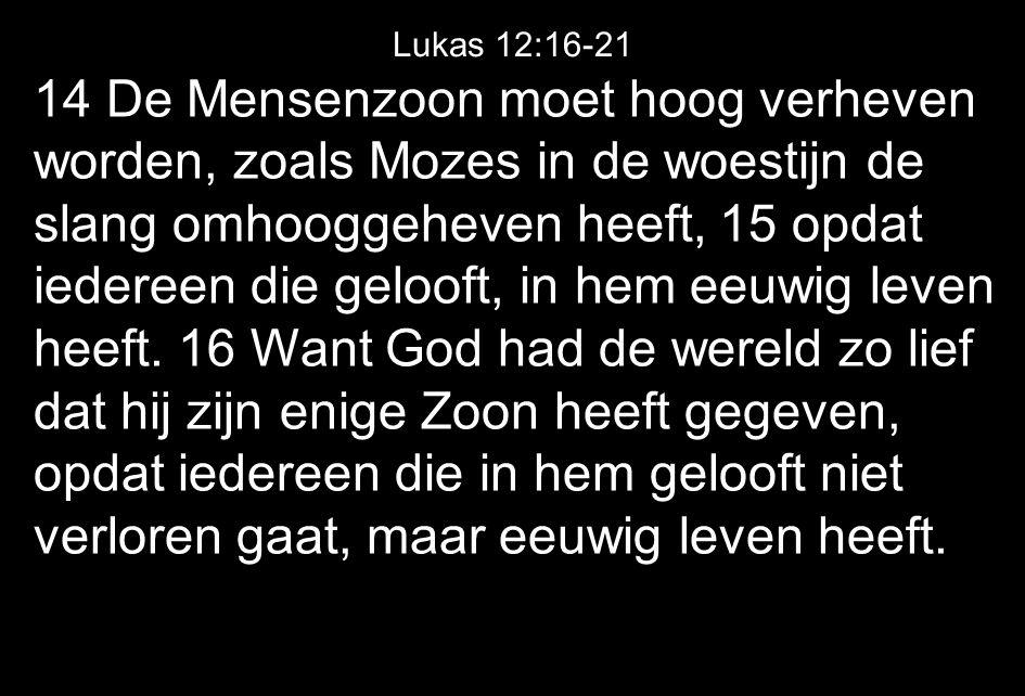 14 De Mensenzoon moet hoog verheven worden, zoals Mozes in de woestijn de slang omhooggeheven heeft, 15 opdat iedereen die gelooft, in hem eeuwig leven heeft.