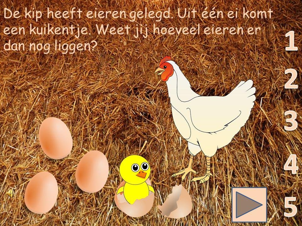 De kip is eieren aan het leggen. Zij legt nog één ei erbij. Hoeveel eieren liggen er dan