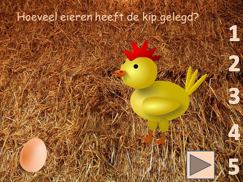 Hoeveel eieren heeft de kip gelegd