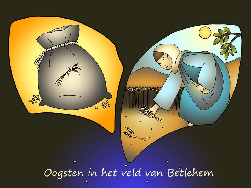 Crèche+ Ruth 2 Er is weer brood in Betlehem.Ruth gaat aan het werk op het land van Boaz.