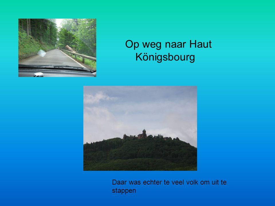 Op weg naar Haut Königsbourg Daar was echter te veel volk om uit te stappen