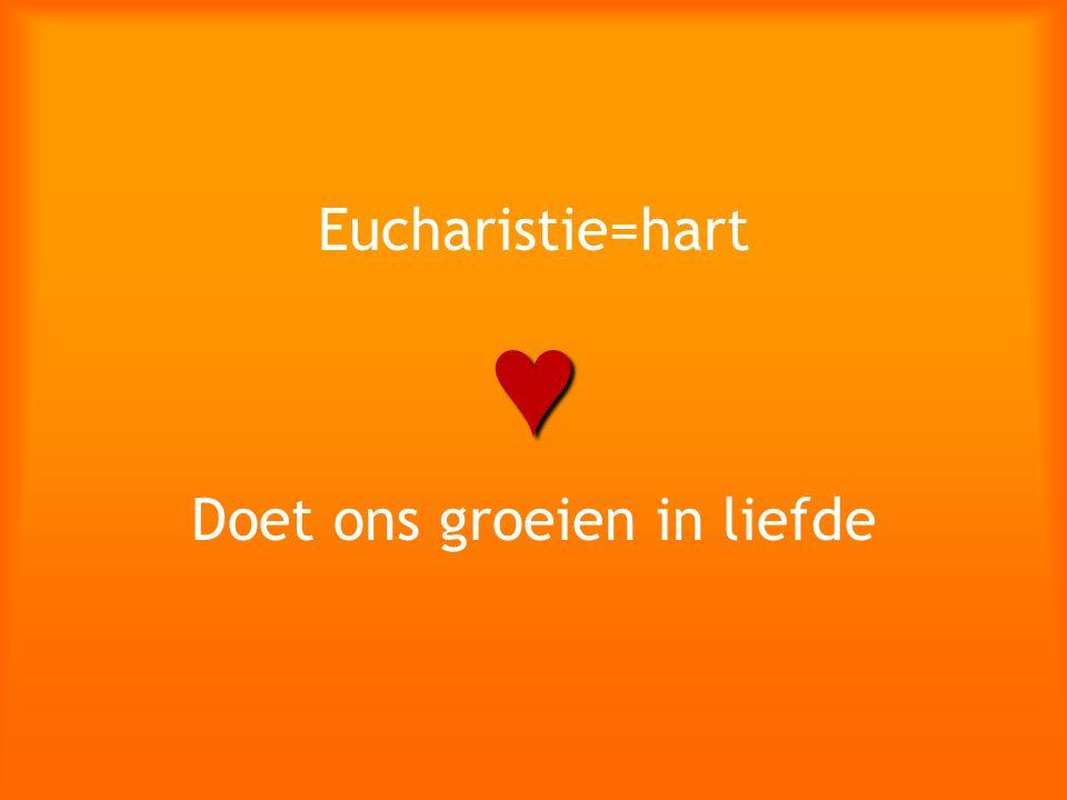 Eucharistie=hart♥ Doet ons groeien in liefde