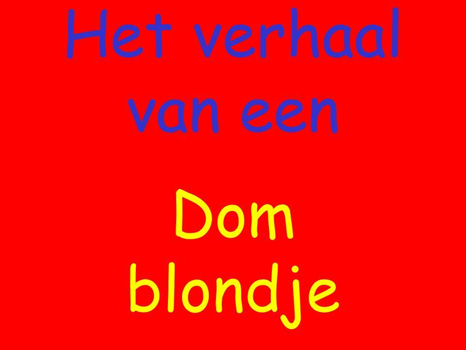 Het verhaal van een Dom blondje