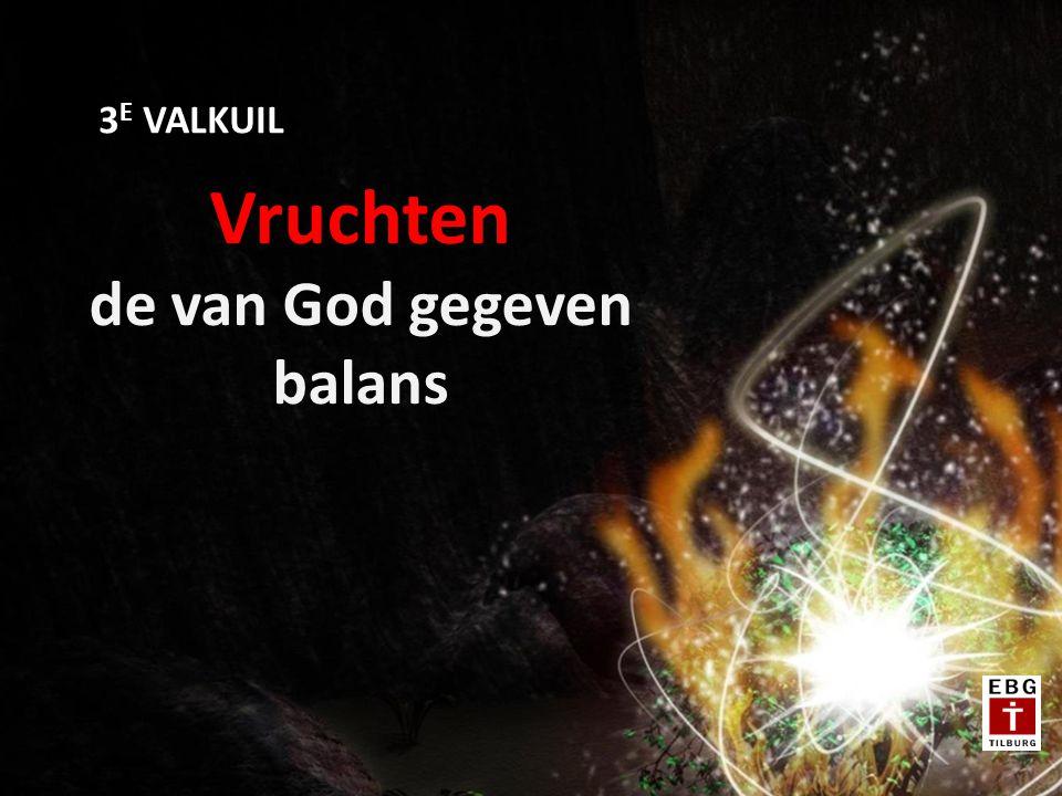 Vruchten de van God gegeven balans 3 E VALKUIL