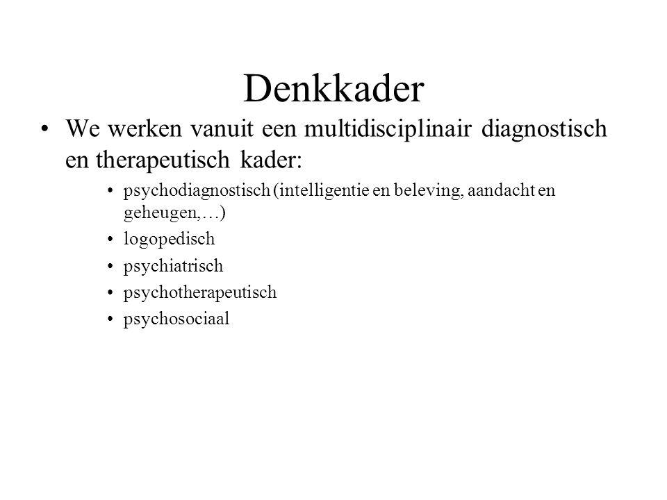 We werken vanuit een multidisciplinair diagnostisch en therapeutisch kader: psychodiagnostisch (intelligentie en beleving, aandacht en geheugen,…) log