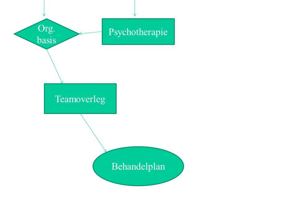 Psychotherapie Org. basis Teamoverleg Behandelplan
