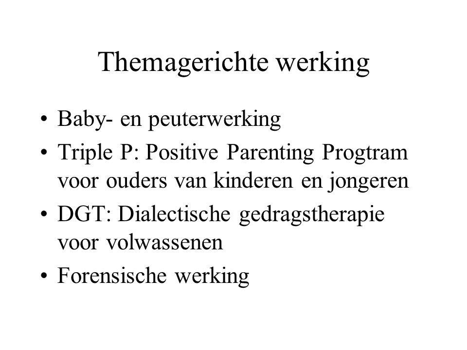 Themagerichte werking Baby- en peuterwerking Triple P: Positive Parenting Progtram voor ouders van kinderen en jongeren DGT: Dialectische gedragsthera