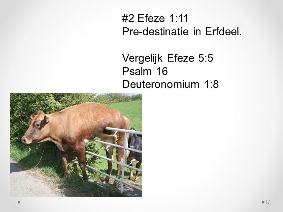 #2 Efeze 1:11 Pre-destinatie in Erfdeel. Vergelijk Efeze 5:5 Psalm 16 Deuteronomium 1:8 15