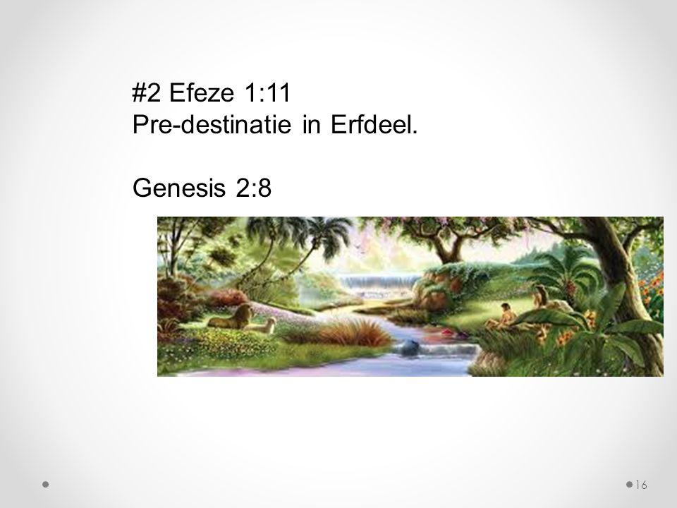 #2 Efeze 1:11 Pre-destinatie in Erfdeel. Genesis 2:8 16