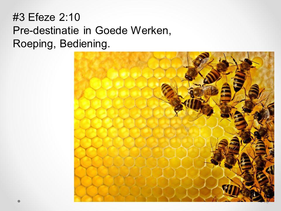 #3 Efeze 2:10 Pre-destinatie in Goede Werken, Roeping, Bediening. 18