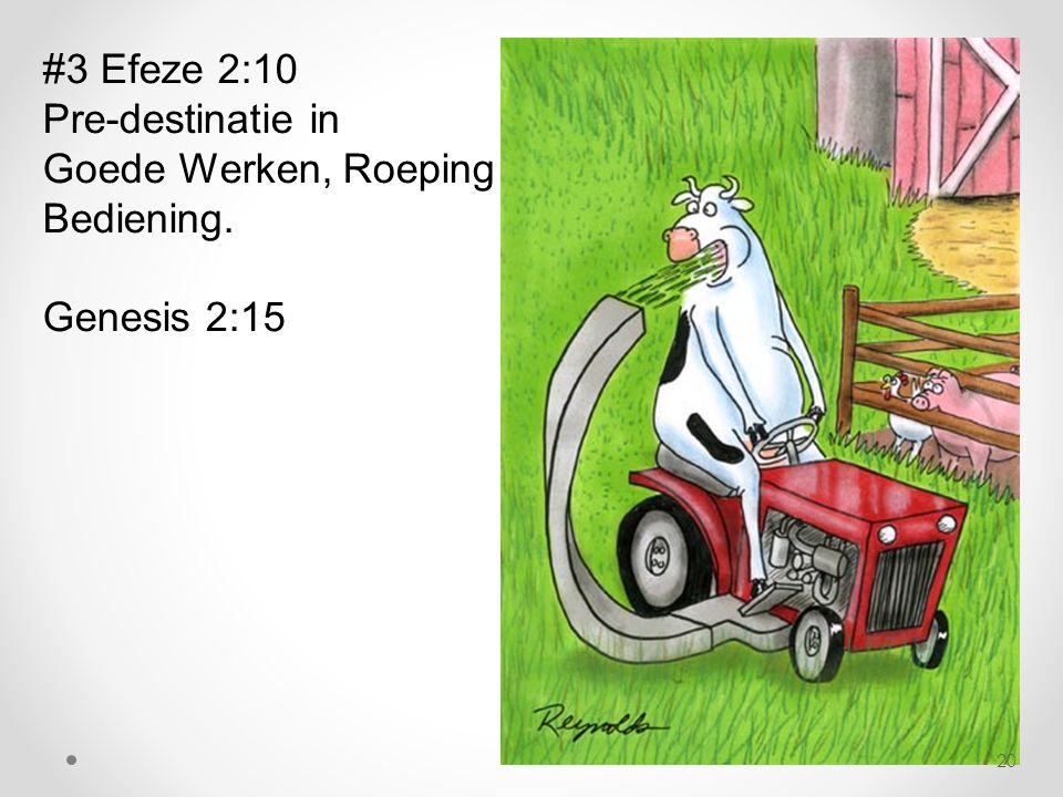 #3 Efeze 2:10 Pre-destinatie in Goede Werken, Roeping Bediening. Genesis 2:15 20