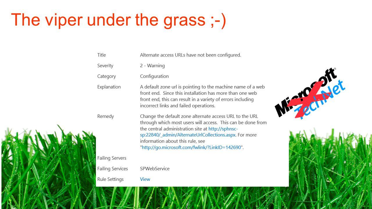 The viper under the grass ;-)