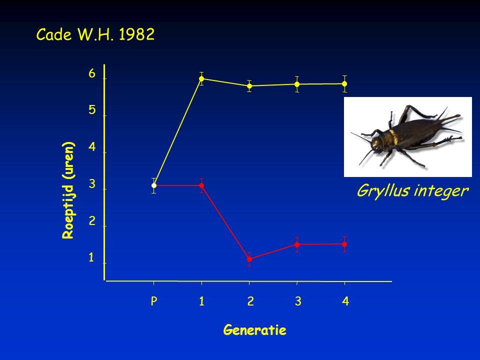 Generatie P1234 Roeptijd (uren) 1 2 3 4 5 6 Cade W.H. 1982 Gryllus integer