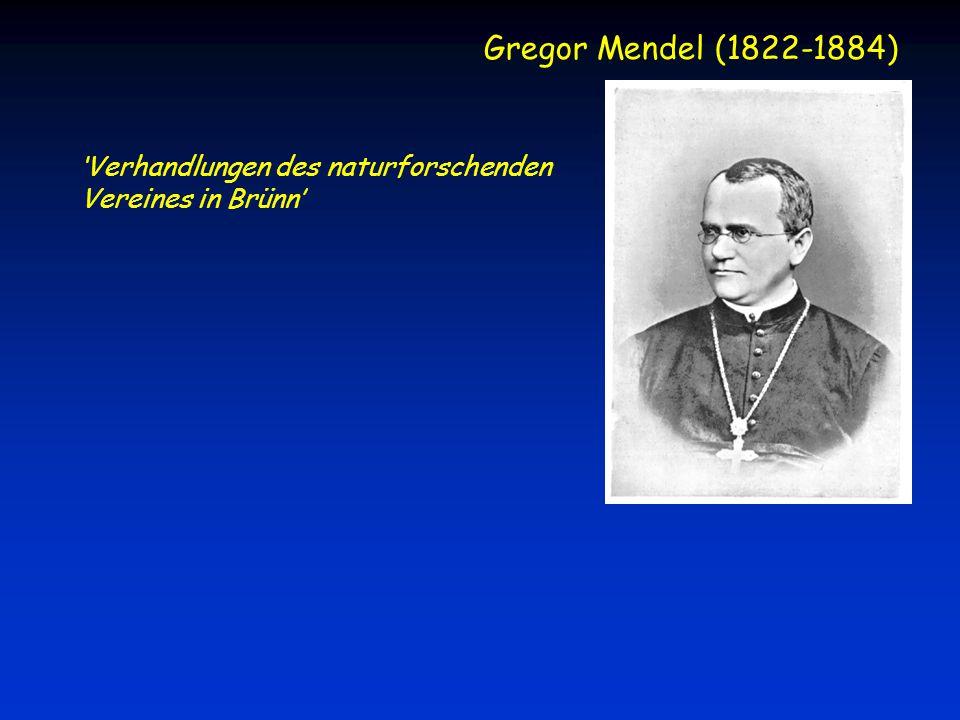Gregor Mendel (1822-1884) 'Verhandlungen des naturforschenden Vereines in Brünn'