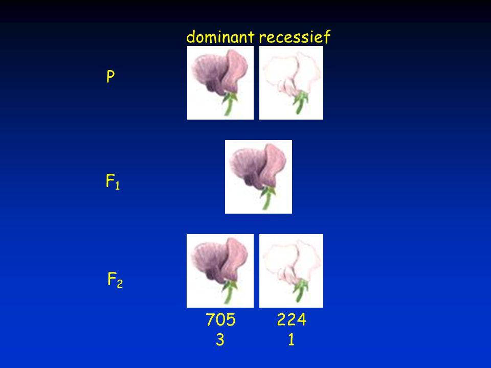 P F1F1 F2F2 705 3 224 1 dominantrecessief