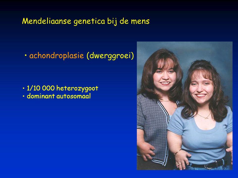 Mendeliaanse genetica bij de mens achondroplasie (dwerggroei) 1/10 000 heterozygoot dominant autosomaal