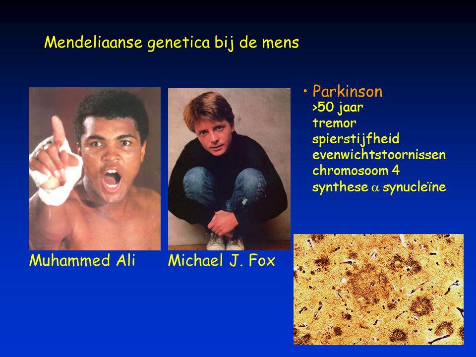 Mendeliaanse genetica bij de mens Muhammed AliMichael J. Fox Parkinson >50 jaar tremor spierstijfheid evenwichtstoornissen chromosoom 4 synthese  sy