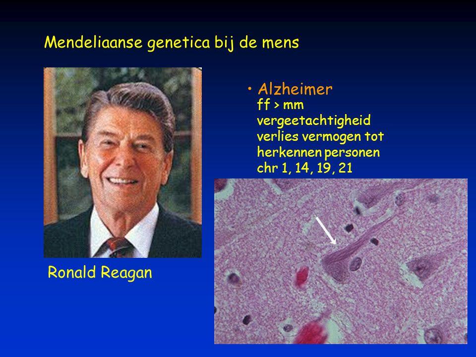 Mendeliaanse genetica bij de mens Alzheimer ff > mm vergeetachtigheid verlies vermogen tot herkennen personen chr 1, 14, 19, 21 Ronald Reagan